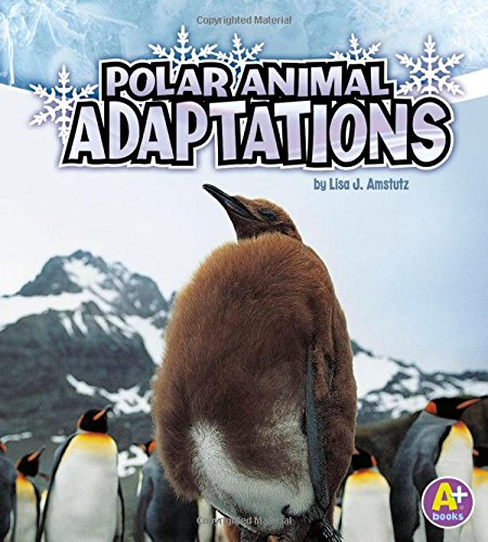 Compare Textbook Prices for Polar Animal Adaptations Amazing Animal Adaptations  ISBN 9781429670319 by Amstutz, Lisa J.
