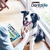 Purina DentaLife Medium Tägliche Zahnpflege-Snacks für mittelgroße Hunde, 5er Pack (5 x 115 g) - 3