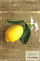 【雑貨/フェイク】 Lemonレモン(花つき) 【造花】