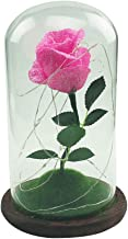 Uonlytech Foil Rose in Glass Dome with Led Lights Romantic DIY Valentine's Day Festival Gifts (Dark Pink)