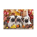 Jigsaw Puzzles 1000 Pieces for Adults Kids Pug Maple Leaf Animal Game Artwork Toy Gifts Home Decor 2021075