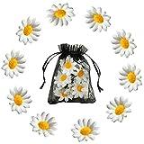 Juego de horquillas para el pelo con diseño de margaritas y flores, para decoración del cabello de novia, niña y mujer (10 unidades)