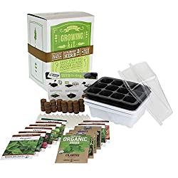 Indoor Vegetable Garden Kit