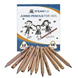 Kids Pencils for Beginners, Toddlers and Preschoolers with Jumbo Triangle Shape, Soft 6B Graphite, Fat Pencils With Easy Grip and Thick Core (12 pack)