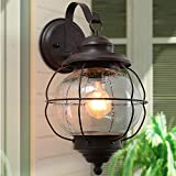 LNC Exterior Porch Light Fixtures,10' Large Size Globe Outdoor Wall Sconce with Seeded Glass & Metal Cage Frame for Garage, Hallway and Patio, A03195