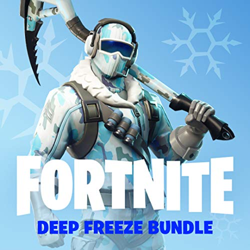 Fortnite Deep Freeze Bundle for PlayStation 4 [USA]