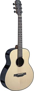 James Neligan LYN-A MINI LYNE Series Auditorium Acoustic Travel Guitar