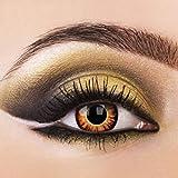 Eye-Effect, lenti a contatto Twilight, da lupo mannaro, adatte per Halloween e carnevale, colorate e prive di diottrie, incluso il contenitore
