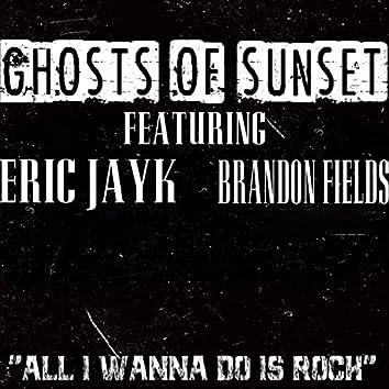 All I Wanna Do Is Rock