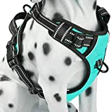 PoyPet No Pull Dog Harness, Reflective Comfortable Vest Harness with Front & Back 2 Leash Attachments and Easy Control Handle for Small Medium Large Dog (Mint Blue,M)