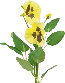 Best pansy party decorations Reviews