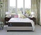 Sealy Response Premium 13-Inch Cushion Firm Tight Top Mattress, King