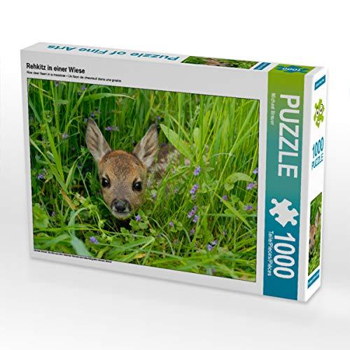 CALVENDO Puzzle Rehkitz in Einer Wiese 1000 Teile Lege-Größe 64 x 48 cm Foto-Puzzle Bild von Christina Krutz