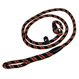 Zeltauto Adjustable Slip 5Ft Lead Dog Rope Nylon Pet Training Noose Leash for Small Medium Dogs (10-80 lb) (Black)