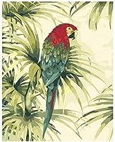 DIYデジタル油絵油絵DIYキャンバス油絵アートギフトデジタルカラーフライングオウム油絵装飾キャンバス油絵40x50cmフレームレス