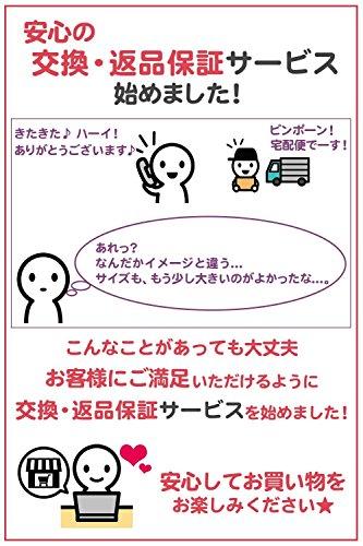 KUENTAI(くうえんたい)『5連S字ステンレスハンガー』