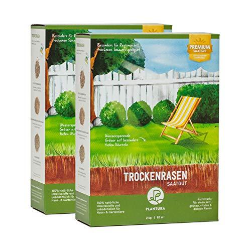 Plantura Trockenrasen, 4 kg, wassersparende Rasensamen für trockene Regionen, Premium-Saatgut