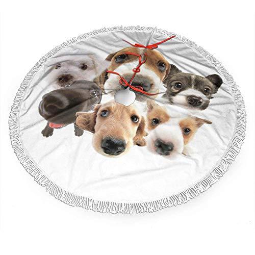 FORGA Animal Print Cute Dog Christmas Tree Falda Decoraciones Adornos Encaje con Flecos Decoración para el...