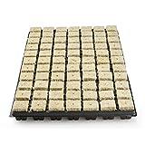 77er vorgesteckte Anzuchtmatte Grodan Steinwollmatte Stecklingsblock Stecktray -