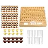 Beekeep - Kit completo para cría de abejas reina