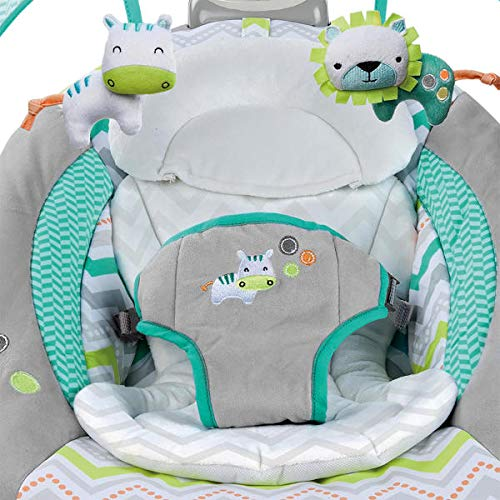 51ADAWrp5cL The Best Ingenuity Baby Swings for 2021 [Compared & Review]