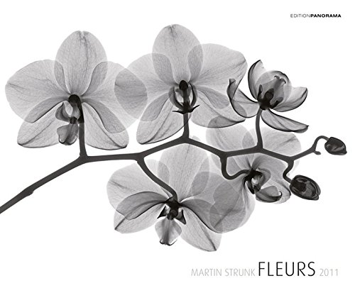 Fleurs- Premiumkalender 2011