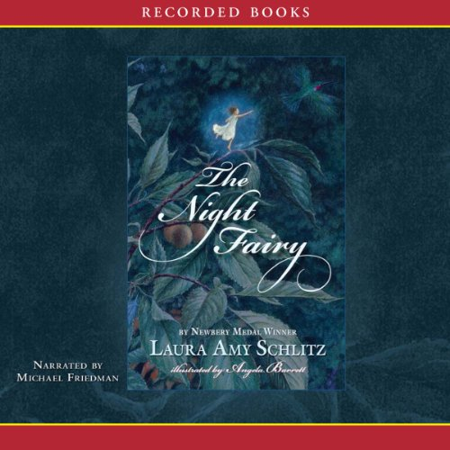 The Night Fairy audiobook cover art