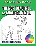 The Most Beautiful and Amazing Animals: Coloring book. 20 realistic drawings (Animal Kaleidoscope)