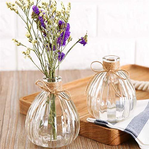 Chakil Florero de Cristal Transparente florero Flor de Agua Creativa Flor de decoración del hogar