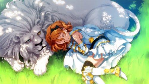 英雄*戦姫(通常版-PSVita