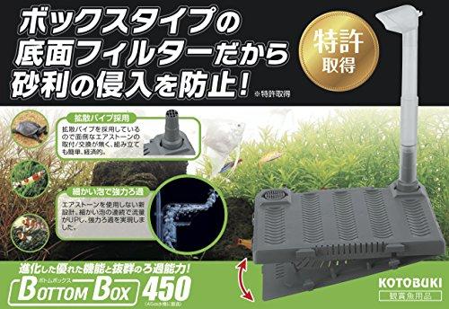 寿工芸 ボトムボックス 450