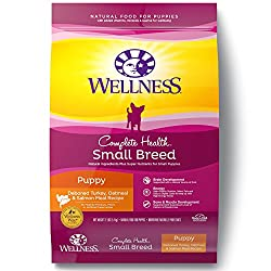 Wellness small breed food