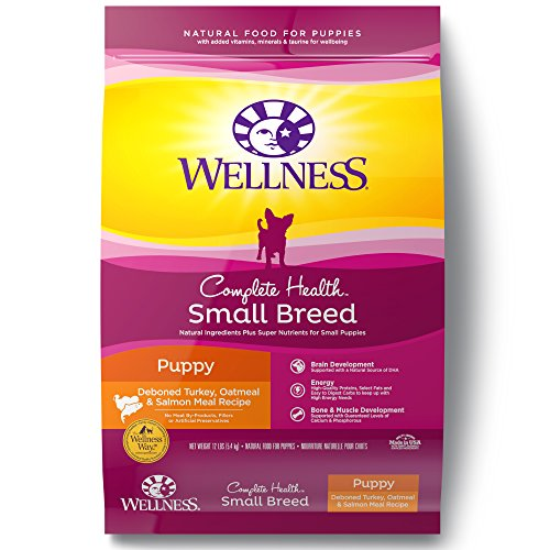 Wellness Natural Pet Food- Complete Health Natural