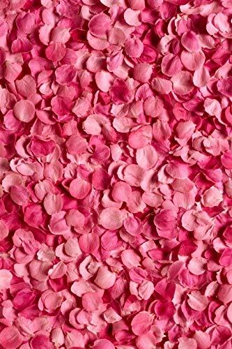 Pink Spring Blossom Flowers Pétalo Rama Fiesta de Amor Bebé recién Nacido Retrato Fondos fotográficos Fondos fotográficos Estudio fotográfico A11 10x10ft / 3x3m