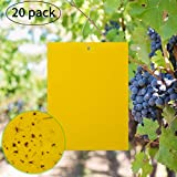 KINBOM 20-Pack Yellow Dual-Sided Sticky Fly Traps for Plant Insect Like Fungus Gnats, Flying Aphid,...