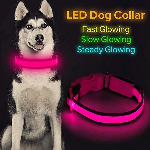 Iseen Collar de perro LED Micro USB recargable con luz brillante para mascotas cómodo y suave malla de seguridad para perros pequeños, medianos y grandes (L, rosa)