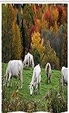 ABAKUHAUS Bauernhoftier Schmaler Duschvorhang, Kühe auf Herbst Hill, Badezimmer Deko Set aus Stoff mit Haken, 120 x 180 cm, Mehrfarbig