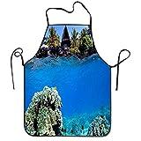 Fanqig Delantal Submarino de Arrecife de Coral y cabaña de Playa para Mujeres, Hombres, Delantal de Cocina Fresco Impreso, protección Grande de Tela, sin Olor, Lavable a máquina