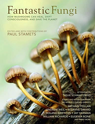 Fantastic Fungi: Expanding Consciousness, Alternative Healing, Environmental Impact // Official Book of Smash Hit Documentary (English Edition)