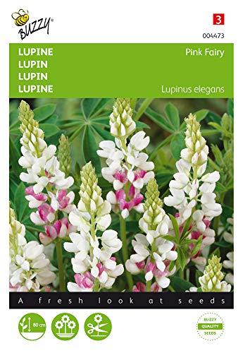 Buzzy Seeds 004473 Lupine Pink Fairy (Lupinensamen)