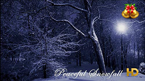 Peaceful Snowfall HD - 14