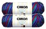 Caron Simply Soft Bulk Buy Stripes 100% Acrylic Yarn (2-Pack) ~ 5 oz. Skeins (Jersey Shore)
