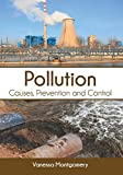 Pollution: Causes, Prevention and Control