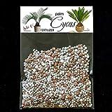 dgdfg Fertilizante Cycas Palme, Palma, Cycas revoluta, Todda-pana suficiente para 20 litros
