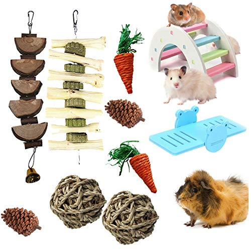 kathson 10 Pcs Hamsters Chew Toys Natural Wooden Gerbil Rats Chinchillas Toy Accessories DIY Rainbow Bridge with PVC Seesaw Sport Exercise Toys for Ball, Grass Radish, Pine Cone Teeth Care Molar