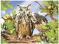 大人のための刻印されたクロスステッチキット初心者動物フクロウ11CTプレプリント用品フルレンジDIYニードルポイント手工芸品子供の家の装飾16x20インチ
