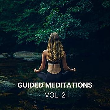 Guided Meditations (Vol. 2)