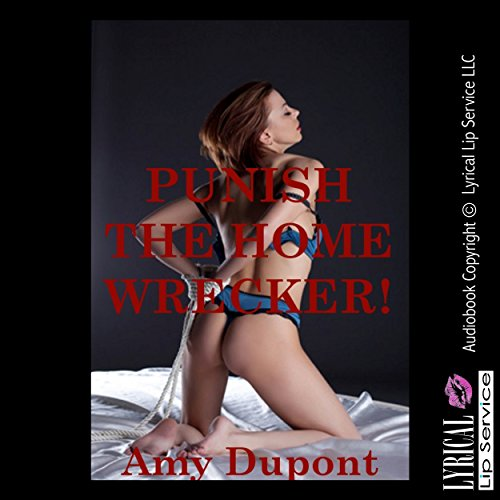 Punish the Homewrecker audiobook cover art