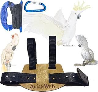 cockatoo harness