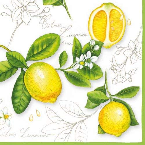 Ambiente Servietten Lunch / Party / ca. 33x33cm Citrus Limonum - ideal als Geschenk